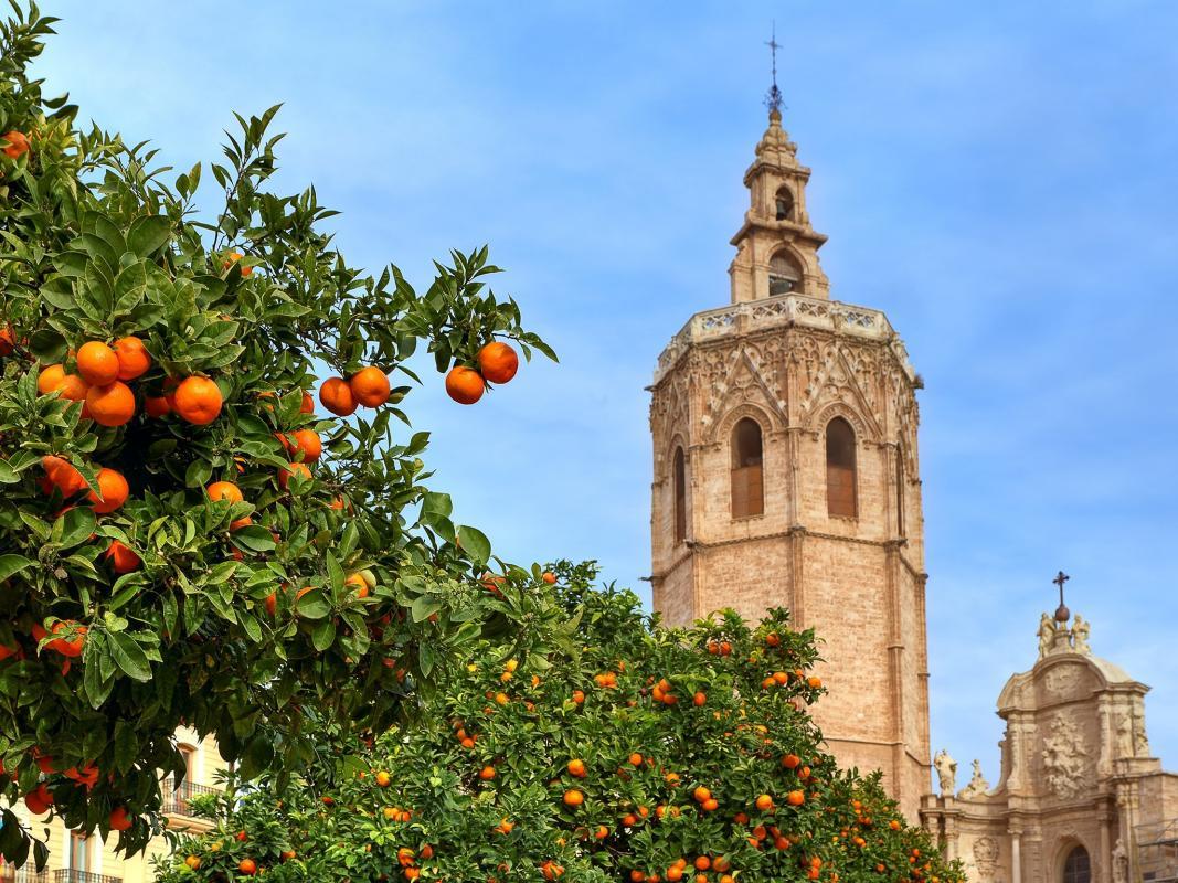 Te recomendamos los mejores sitios para probar la comida tradicional valenciana